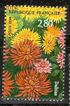 par exemple le mot dahlia vient du nom du botaniste su dois dahl et ne s 39 crit pas dalhia. Black Bedroom Furniture Sets. Home Design Ideas